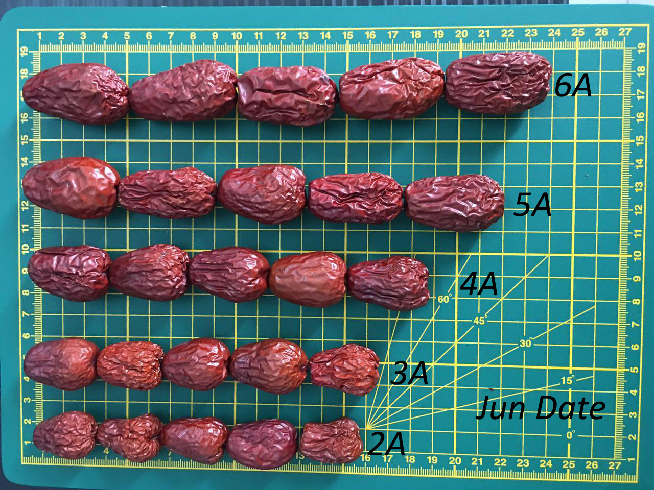 Chinese Organic Red Date