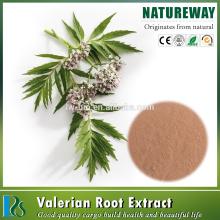 Factory 100% Natural Valeriana officinalis extract, Valerian Root Powder Extract