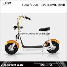 2016 La plus élégante Smart Harley Scooter électrique Citycoco Scooter Deux grandes roues pour Cool Sports Petit scooter Harley