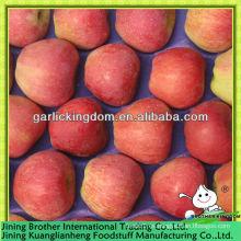 Fábrica de manzanas de estrella roja