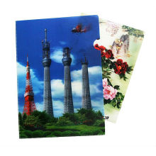 Plastic PP File Folder with 3D Effect Lenticular Printing