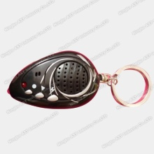 Voice Key Ring, Sound Keychain, Keychain, Voice Keychain