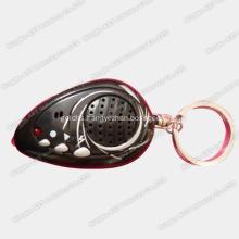 Voice Key Ring, Sound Keychain,Keychain, Voice Keychain