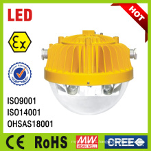 15W 25W Emergency Explosion Proof Platform Light (BC9302A BC9302B)