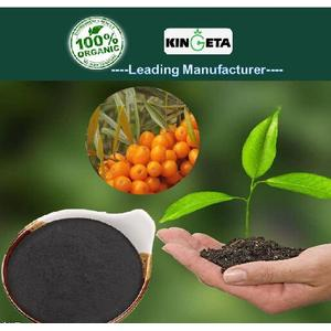 Best Plant food Organic Fertilizer with ISO