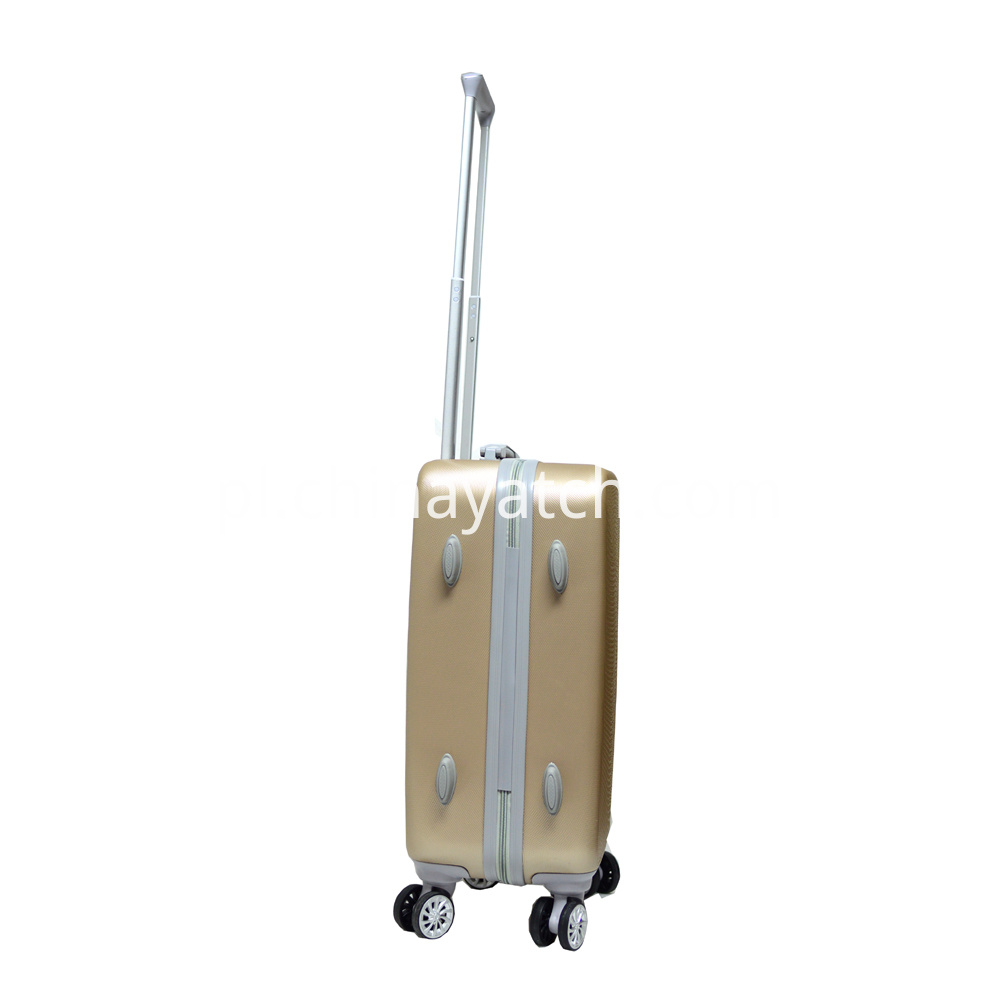 Attactive Grain Luggage