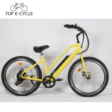 OEM E-Bike Cruiser City Style 500W Bafang Motor eléctrico Bike 48V 10.2Ah Green Power Ebike China