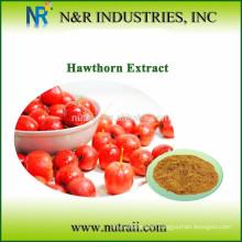 hawthorn berry powder 60-200mesh