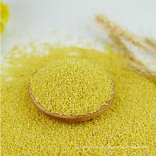 Bon millet jaune Millet décortiqué, séché à la vente, le prix du millet