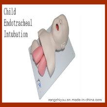 Modelo de Treinamento de Intubação Endotraqueal Infantil (modelo médico educacional)