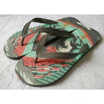 The Slipper with Europe Style PE+Screen Printing
