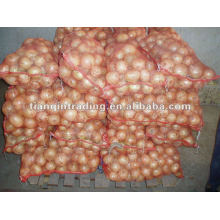 Chinese Red Shallot
