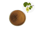 Best Price Pure Natural 100% Organic Supplement Grape Seed Extract Powder