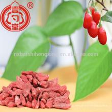 Fruit de santé ningxia zhongning bas pesticide séché goji berry avec beaucoup de vitamine C