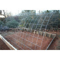 Hot-Dipped Galvanized Cattle Panel Fencing