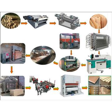 Línea de producción de madera contrachapada que hace la máquina