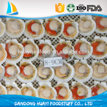 Fornecedor de ouro alibaba concha congelada meia concha com ovas