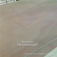combinez le contreplaqué commercial de bingtangor de colle de noyau BB / CC E1 pour des meubles