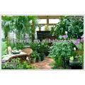 SUPERABSORBENT HYDROGEL FOR PLANTS