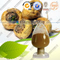 Pure Maca Extract Powder with FDA Registered