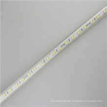 AC110V LED Tape light For Shop Home Bedroom