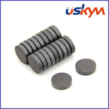China Factory Disc Ferrite Magnets (D-006)
