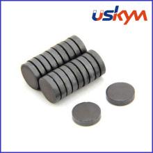 China Ícones de fábrica de disco de ferrite (D-006)