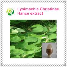 Approvisionnement d'usine de produits de bio-technologie directement avec l'extrait concurrentiel de fines herbes de perte de salive de Christina