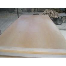 Contraplacado de vidoeiro / Contraplacado de vidoeiro UV / Contraplacado de vidoeiro acabado
