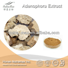 Nutramax Supply-100% Natural Radix Adenophora Extract Powder 4:1 5:1 10:1 20:1