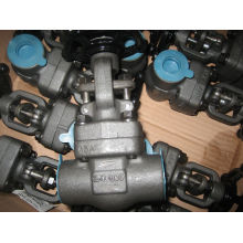 Válvulas de aço forjado A105