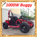 Cheap 1000w Electric four wheelers(MC-249)
