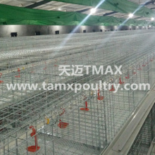 Pre-fabricated Metal Structure House