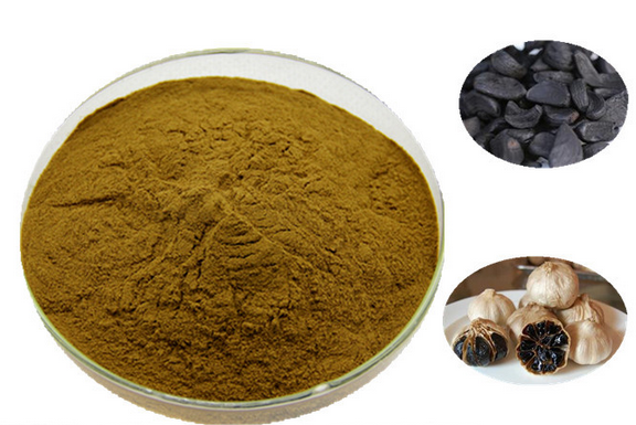 black garlic powder