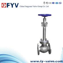 Válvula de globo criogénico de acero fundido manual