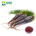 Black Carrot Pigment Natural Red Color Powder