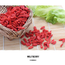 2017 New crop fresh 280 grains certified organic goji berry