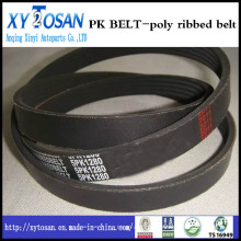 Poly-Ribbed Belt-Pk Belt