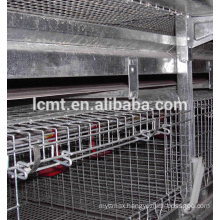 industrail galvanized 4 teirs 160 birds chicken cage