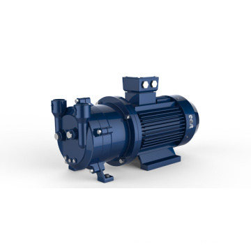 Ring Vacuum Pump