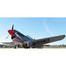 Nueva llegada de venta caliente DIY P40 12CH RC avión
