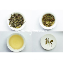 Fuding Organic White Pfingstrose Weißer Tee