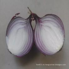 Fresh Onions Ton Price / Cebollas Rojas Importadores