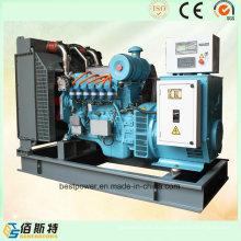 Китай Марка 80kw 100 кВА Природный генератор газа Установить Низкая цена