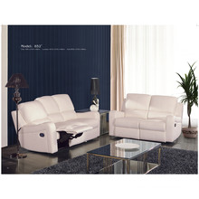 Electric Recliner Sofa USA L&P Mechanism Sofa Down Sofa (C852#)
