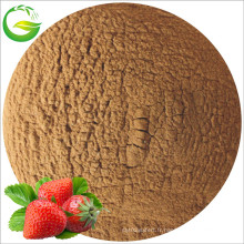 Engrais de fer chélaté à l'acide fulvien (50% FA + 10% Fe)