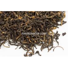 Frühling Yunnan Premium Maofeng Schwarzer Tee
