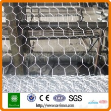 chicken and rabbit Hexagonal wire mesh