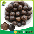 China fermented black garlic seeds
