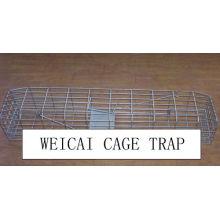 Mink, Squirrel, Weasel, Ferrets Cage